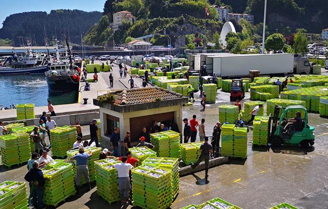 Cajas para pescado