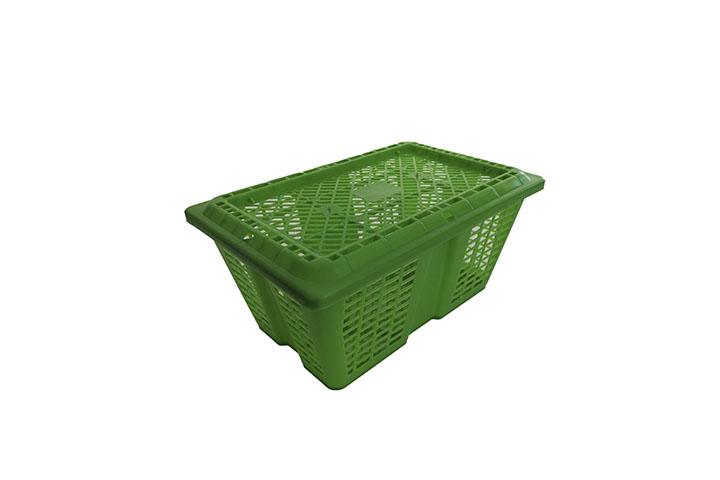 Greentray Basket 3Kg