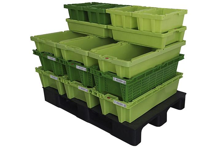 Greentray Nest 30L + P30L + 23L + 20L + Retail 12L