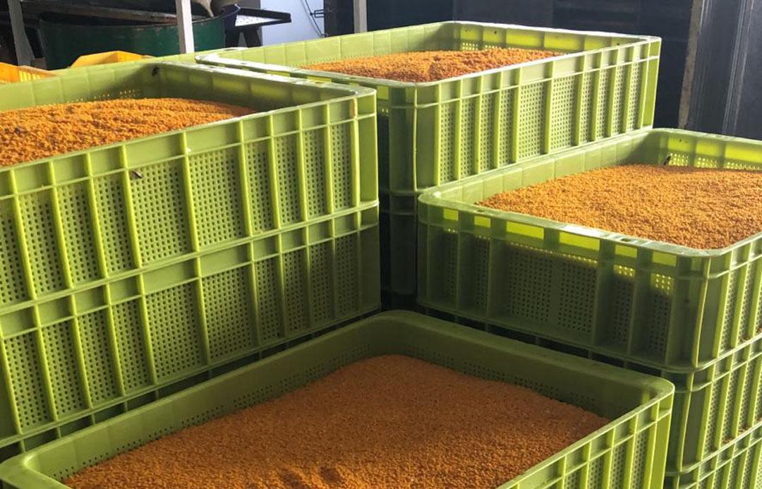 ¿Cuáles son las utilidades de nuestro modelo de caja freeze P en la apicultura?